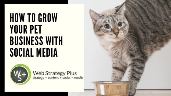 5 Ways to Grow Your Pet Business With Social Media
